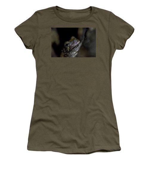Grey Tree Frog Women's T-Shirt