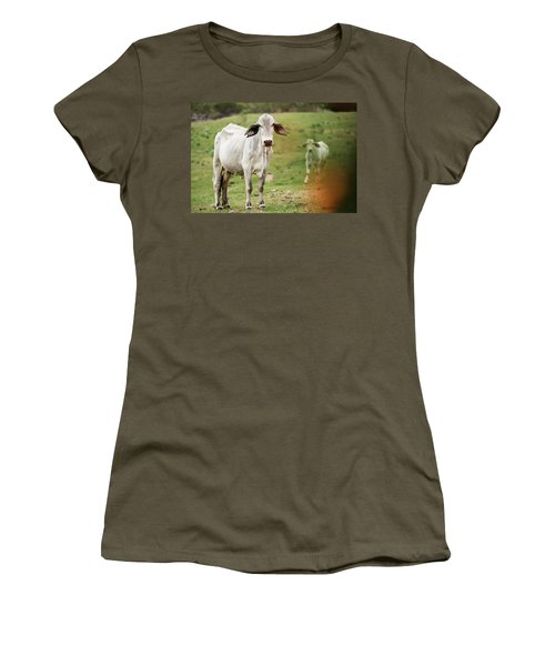 Women's T-Shirt featuring the photograph Australian Cow by Rob D Imagery
