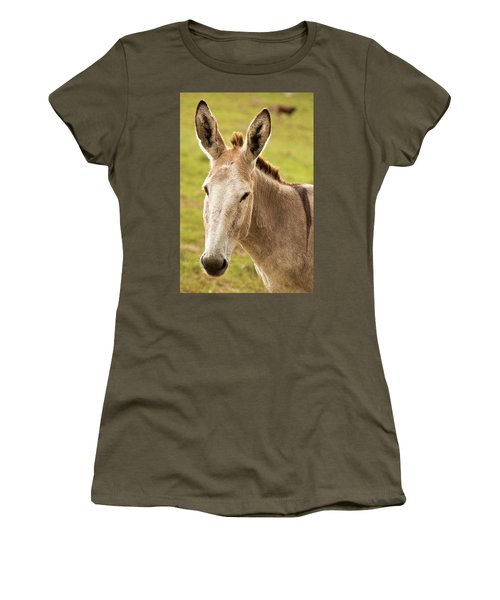 Women's T-Shirt featuring the photograph Donkey Out In Nature by Rob D Imagery