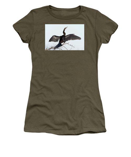 Anhinga Women's T-Shirt