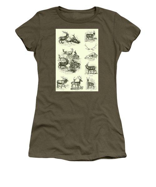 Assorted Deer Women's T-Shirt