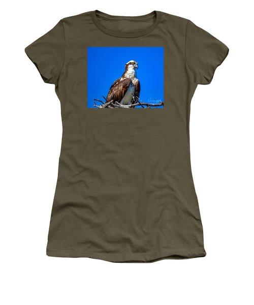Beautiful Osprey Women's T-Shirt