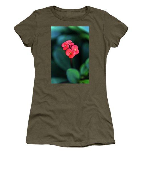 Beautiful Summer Flowers Women's T-Shirt