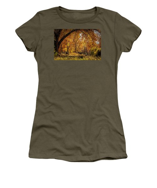 Bench With Autumn Leaves  Women's T-Shirt