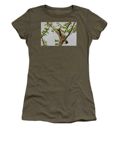 Black-throated Barbet Women's T-Shirt