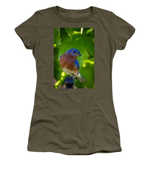 Bluebird Women's T-Shirt