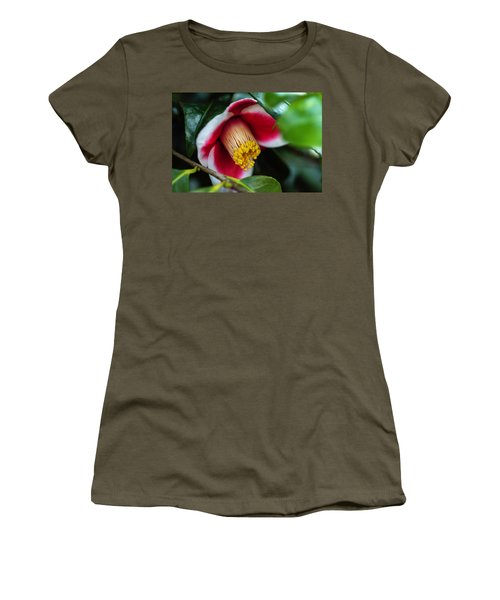 Camellia Bloom And Leaves Women's T-Shirt