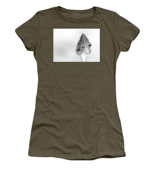 Clematis Bud In Rain Women's T-Shirt