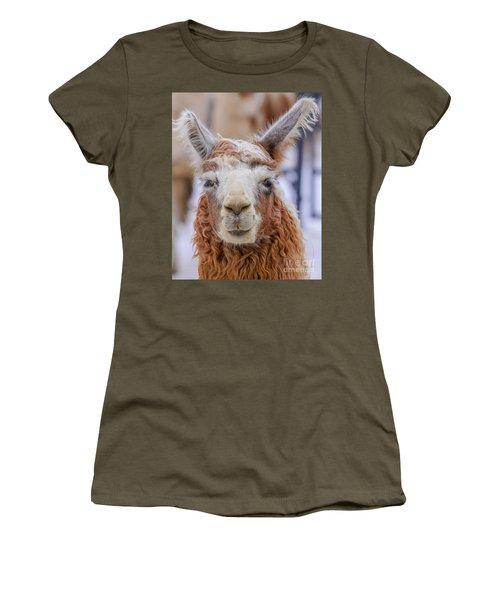 Cute Llama Women's T-Shirt
