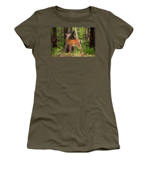 Doe, A Deer, A Female Deer Women's T-Shirt