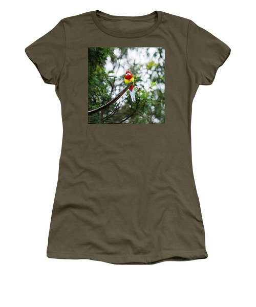 Eastern Rosella Women's T-Shirt