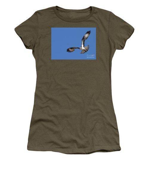 Focused Osprey Women's T-Shirt