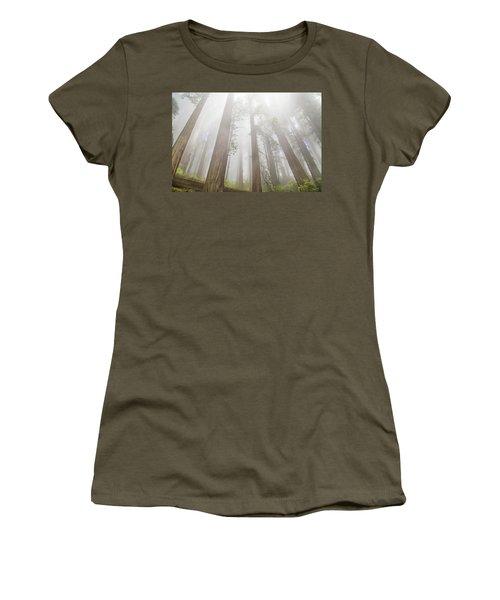 Fog In The Redwoods Women's T-Shirt