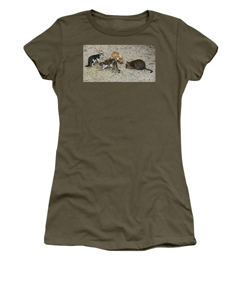 Women's T-Shirt featuring the photograph Four Foraging Felines by PJ Boylan