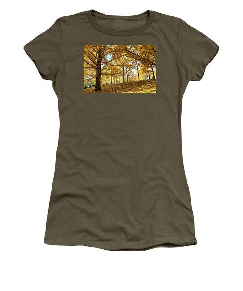 Ginkgo Grove Women's T-Shirt