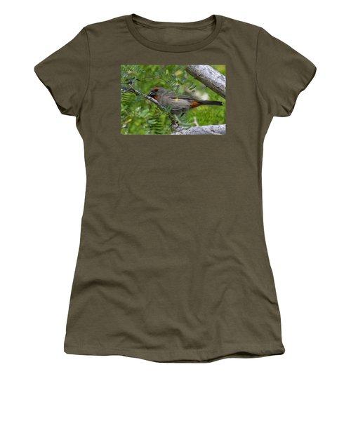 Greater Antillean Bullfinch Women's T-Shirt