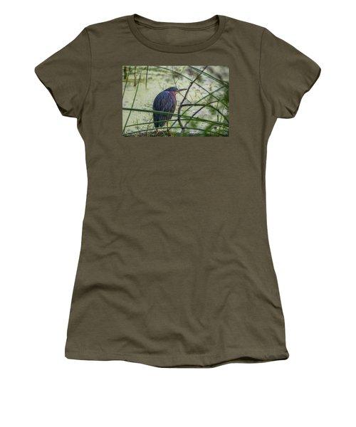 Green Heron Women's T-Shirt