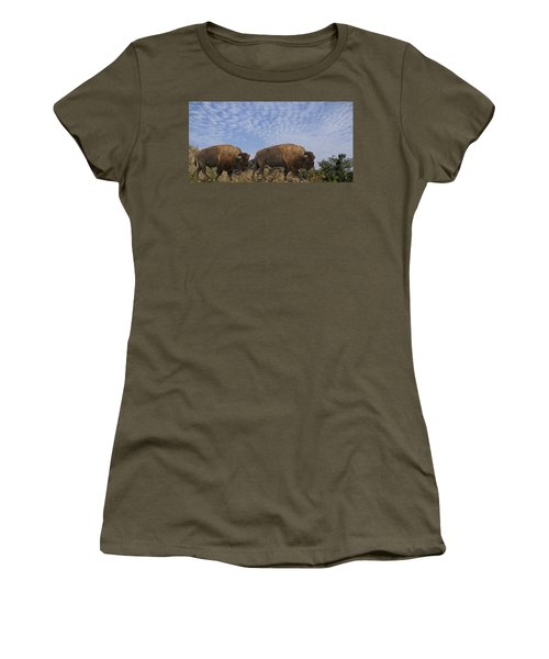 Group Of Bison Walking Against Rocky Mountains  Women's T-Shirt
