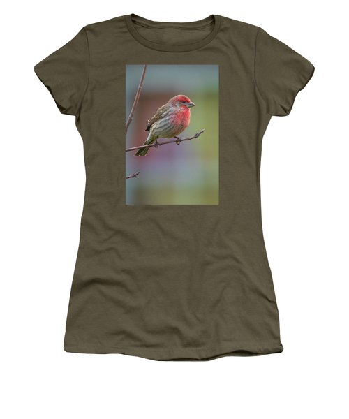 Women's T-Shirt featuring the photograph House Finch by Allin Sorenson