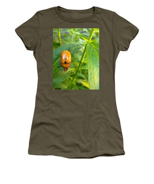 June Bug Women's T-Shirt
