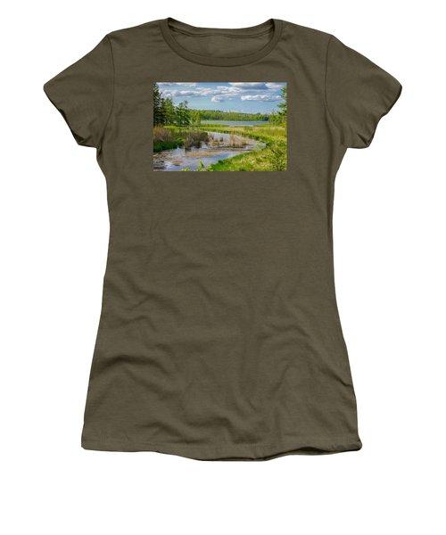 Lake Itasca Beauty Women's T-Shirt