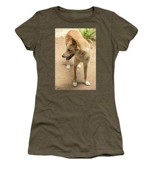 Large Australian Dingo Outside Women's T-Shirt