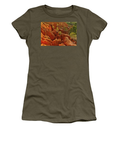 Little Pine Trees Growing On The Valley Cliffs Women's T-Shirt