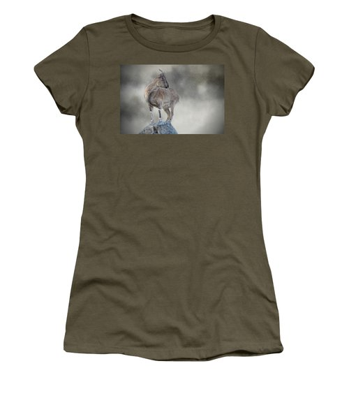 Little Rock Climber Women's T-Shirt