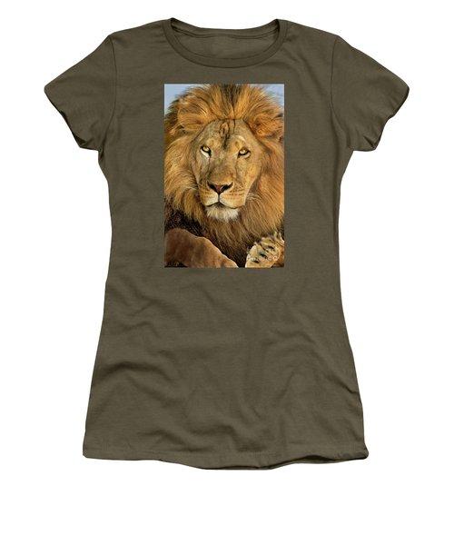 Male African Lion Portrait Wildlife Rescue Women's T-Shirt