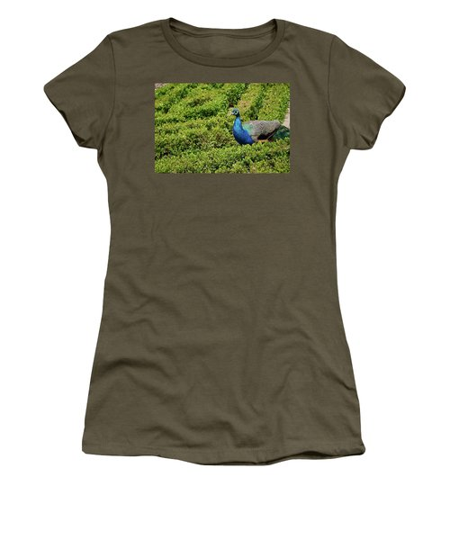 Male Peafowl In Retiro Park, Madrid, Spain Women's T-Shirt