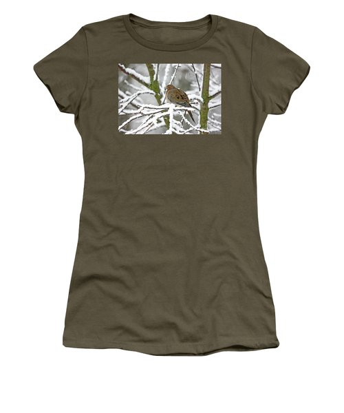 Mourning Dove In Snowstorm Women's T-Shirt
