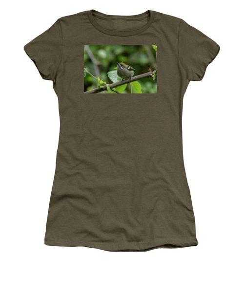 Moustached Tinkerbird Women's T-Shirt