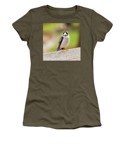 Noisy Miner Women's T-Shirt