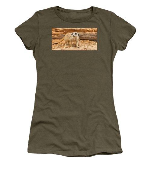 One Meerkat Looking Around. Women's T-Shirt