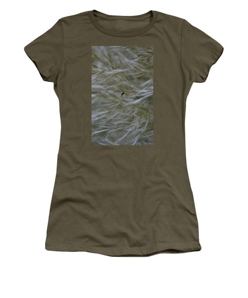 Pampas Grass And Insect Women's T-Shirt