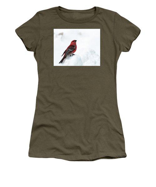 Pine Grosbeak In The Snow Women's T-Shirt