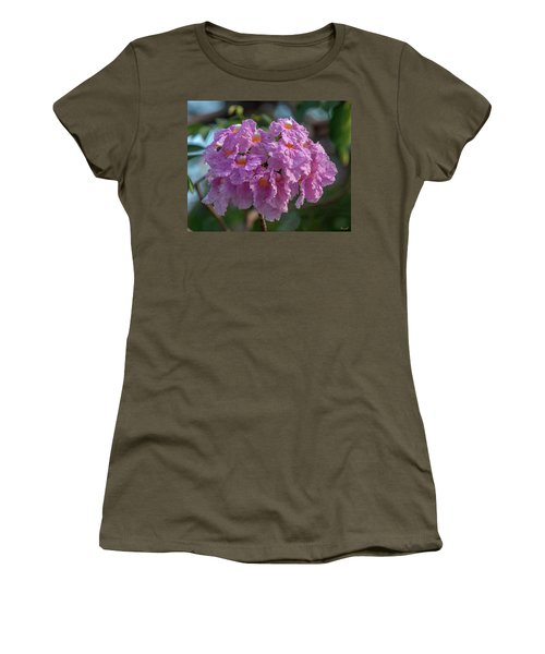 Women's T-Shirt featuring the photograph Pink Trumpet Tree, Rosy Trumpet Tree Or Pink Poui Dthn0257 by Gerry Gantt
