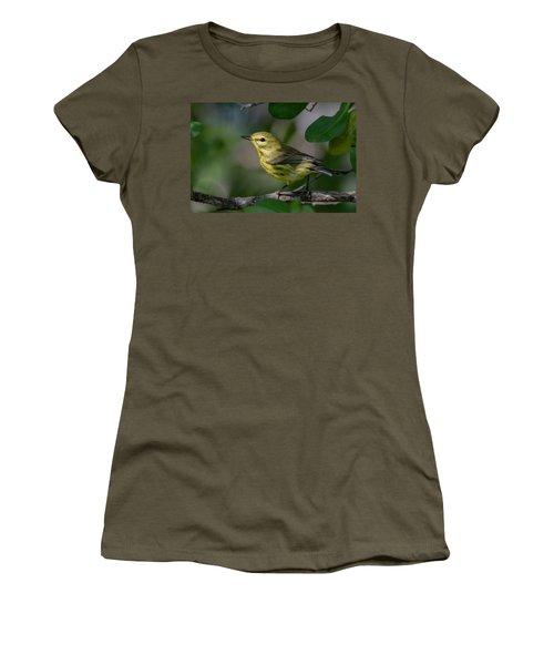 Prairie Warbler Women's T-Shirt