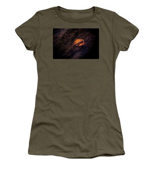 Ray In The Grass Flats Women's T-Shirt