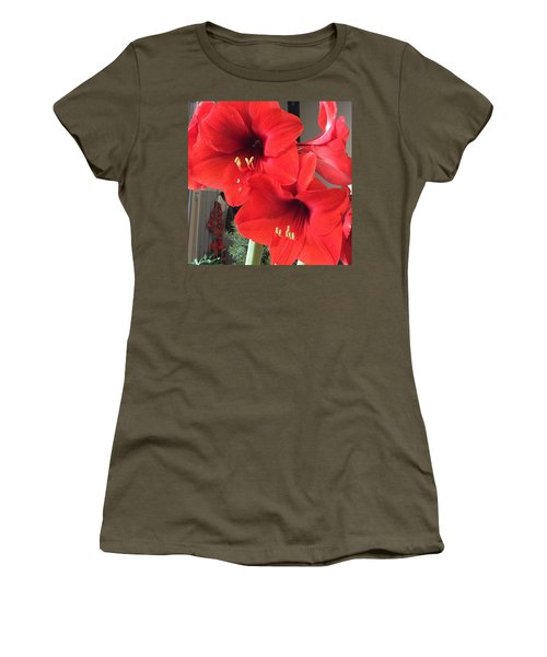 Red Amaryllis Women's T-Shirt