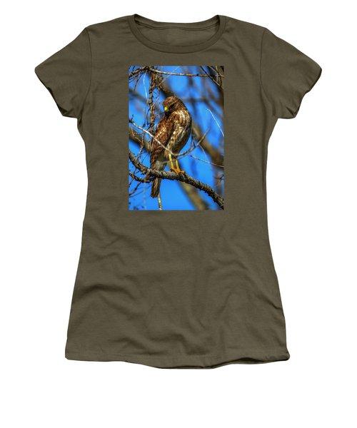 Red Shouldered Hawk Women's T-Shirt