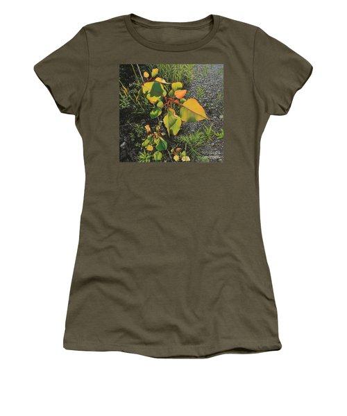 Roadside Attraction Women's T-Shirt