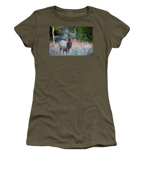 Rocky Mountain Wildlife Bull Elk Sunrise Women's T-Shirt