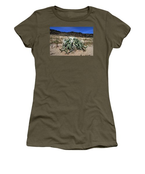 Star Lilys Its Springtime In The Rockys Women's T-Shirt