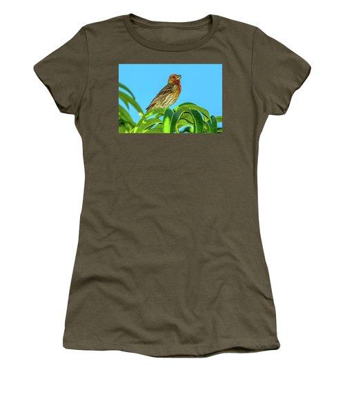 Singing House Finch Women's T-Shirt