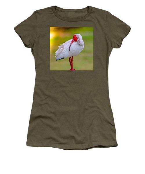 Sleepy Ibis Women's T-Shirt