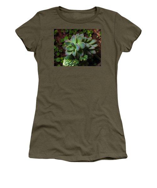 Small Succulents Women's T-Shirt