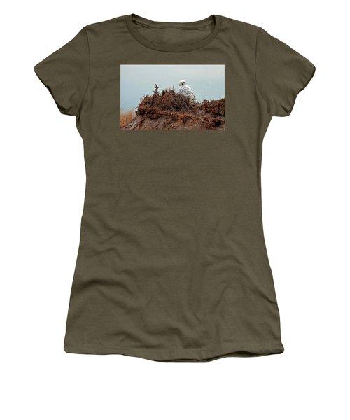 Snowy Owl In The Dunes Women's T-Shirt