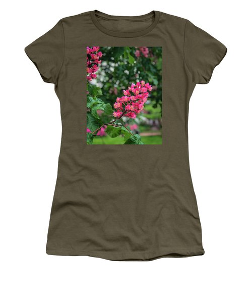 Spring Blossoms Women's T-Shirt
