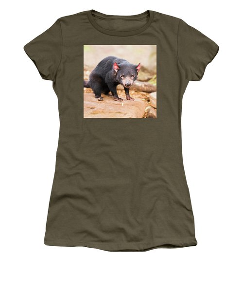 Tasmanian Devil In Hobart, Tasmania Women's T-Shirt
